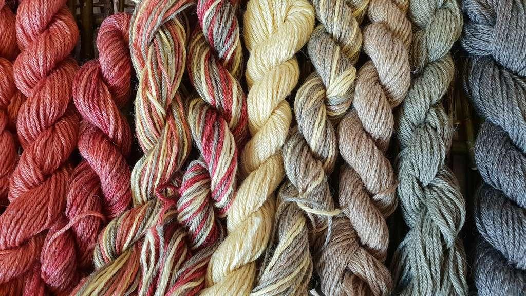 La douceur de la laine dépend de l'épaisseur de la fibre : plus elle est épaisse, plus elle gratte. © Oliver, Fotolia