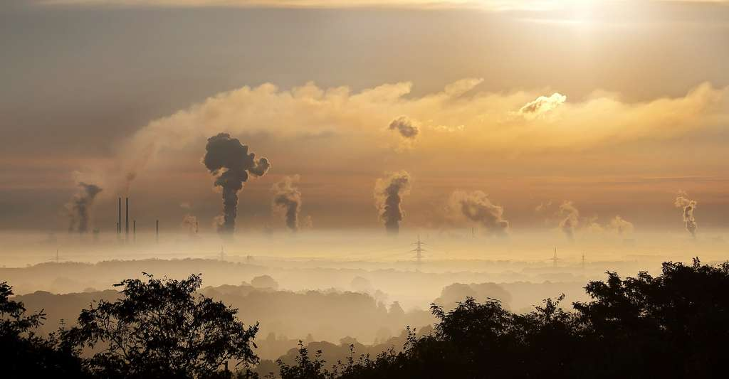 Les experts estiment que la pollution de l'air tue environ 4,2 millions de personnes par an. Des chercheurs se sont aujourd'hui intéressés à ses effets sur nos cheveux. © Foto-Rabe, Pixabay License