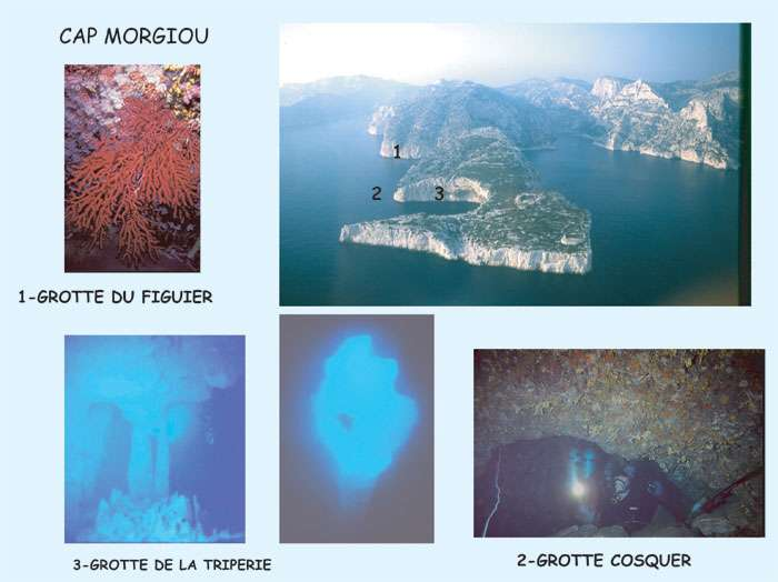Figure 11 et 12. Galeries sous-marines et grotte Cosquer. © J. Collina-Girard