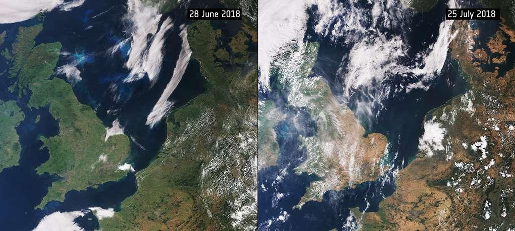 Sur ces images du satellite Sentinel-3 prises les 28 juin et 25 juillet 2018, on peut voir les effets de la sécheresse sur le nord de la France et ses voisins le Royaume-Uni, la Belgique, les Pays-Bas, le Danemark… En un mois, ils sont passés d'un vert léger, au début de l'été, au jaune fin juillet. © Copernicus, ESA