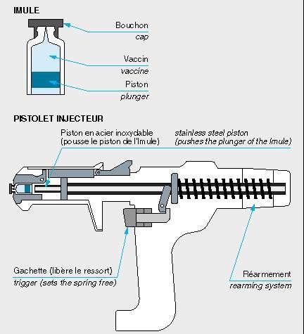 Le pistolet est l'un des moyens de lutte contre les infections dues à la vaccination. Il est plus rapide et plus propre qu'une seringue classique et demande moins de maintenance, tout en générant moins de déchets. © DR