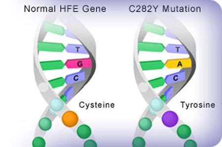Mutation génique Reproduction et utilisation interdites