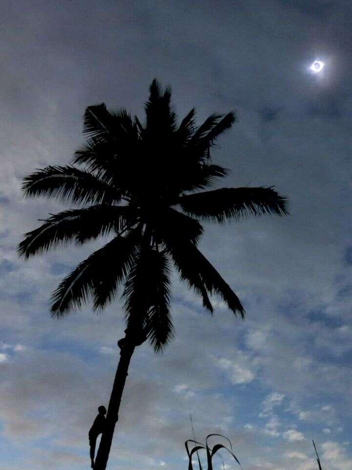 L'éclipse totale de Soleil du 9 mars 2016, photographiée sur l'île de Ternate, en Indonésie. © Janne Pyykkö via Spaceweather.com