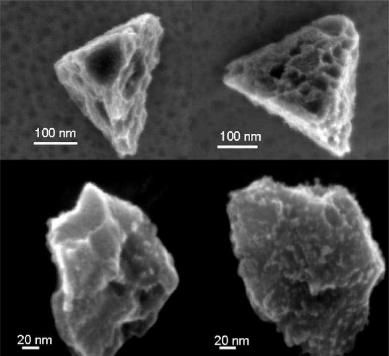 Les grains de carbure de silicium font partie des particules les plus résistantes pouvant être extraites d'une météorite. On voit ici quatre de ces grains extraits de la météorite de Murchison. La largeur d'un cheveu humain moyen est environ mille fois plus grande que la barre d'échelle de 100 nm sur ces photographies prises avec un microscope électronique. © Amari et al. (1994) Geochimica et Cosmochimica Acta 58, 459-47
