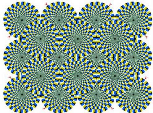 Lorsque nous balayons du regard cet assemblage, les cercles s'animent sous l'effet de la répétition et de la concentricité. Amusez-vous avec notre sélection des 15 illusions d'optique, en cliquant sur l'image. © Akiyoshi Kitaoka