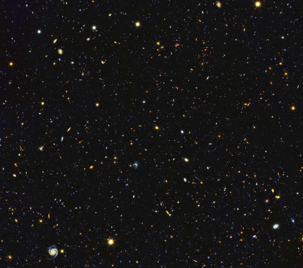 Les galaxies foisonnent dans cette image composite du projet HDUV (Hubble Deep UV). Téléchargez l'image en très haute résolution ici (attention : 82,1 Mb). © Nasa, ESA, P. Oesch (University of Geneva), M. Montes (University of New South Wales)