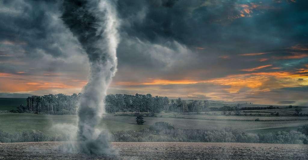 Quelle est la vie d'un cyclone ? Ici, tornade par une nuit d'orage. © Vchal, Shutterstock