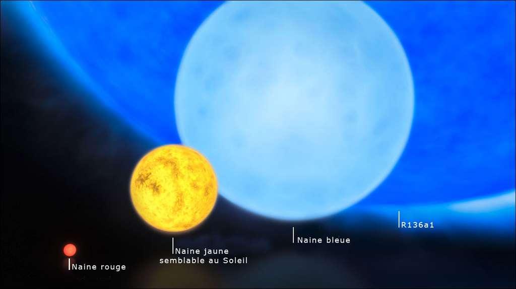 Une comparaison de la taille des étoiles. Le Soleil, qui fait partie des naines jaunes, fait pâle figure comparé à R136a1. Crédit : ESO M Kornmesser.