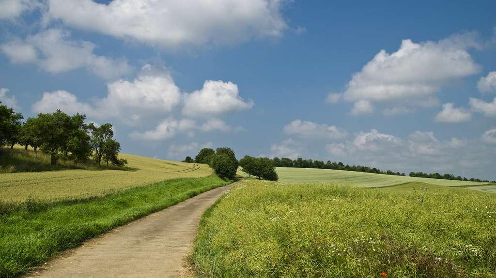 L'agriculture, principale victime du réchauffement et grosse émettrice de gaz à effet de serre, peut finalement apporter de vraies solutions pour refroidir la planète, tout en produisant de quoi nous nourrir ! © Broin, Pixabay, DP