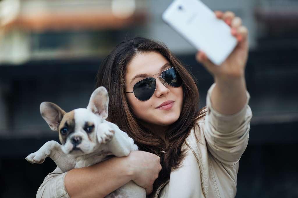 Comme votre adolescent, votre chien peut se montrer non coopératif à un certain âge. © Dusko, Adobe Stock