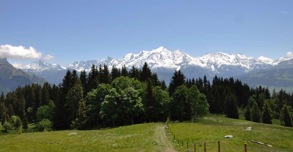 Vue sur le Mont-Blanc. © JudRob, Pixabay, DP