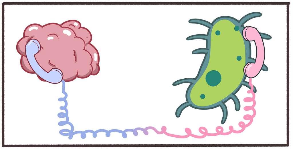 La compréhension de ce qu'il se passe entre notre microbiote et notre cerveau est primordiale pour mieux interpréter (et mieux traiter) la dépression. © Steven, Adobe Stock