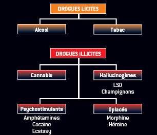 Drogues licites et drogues illicites... Vision simplifiée des drogues licites et illicites. La consommation du cannabis est, par ordre décroissant, plus importante que celle des psychostimulants, des opiacés et des hallucinogènes. Les drogues licites seraient de loin en tête si on les comparait aux substances proscrites.