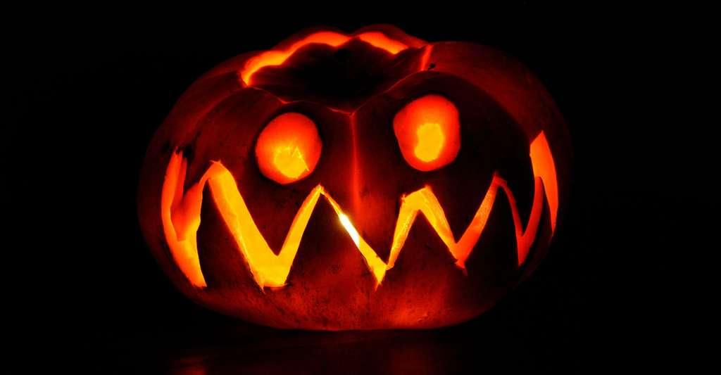 Halloween. © PublicDomainPictures, Pixabay, DP