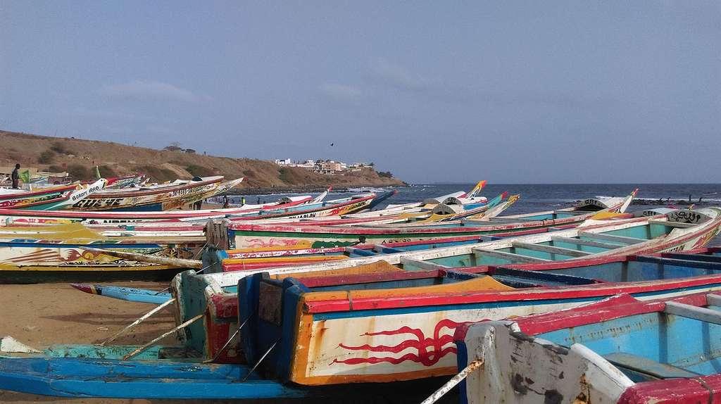 Le port de Dakar est le plus grand port de pêche au Sénégal. Les prises y sont de plus en plus maigres comme sur toute la côte ouest-africaine. © Pshegubj, Wikimedia commons, CC 4.0