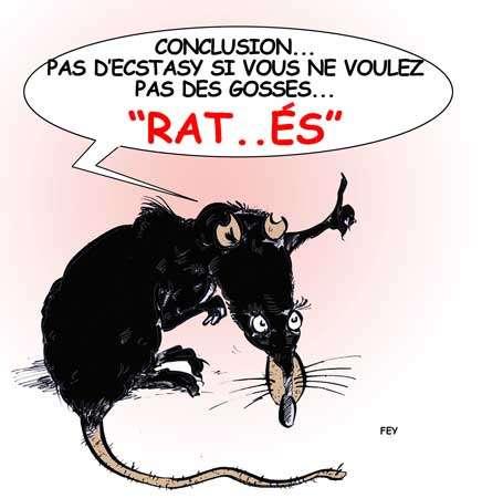 © Fey - Gueules d'Humour pour Futura-Sciences