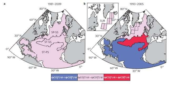 Carte montrant la différence d'évolution des concentrations en dioxyde de carbone dans l'atmosphère et dans l'océan. En rose, les concentrations évoluent de la même manière. En rouge, la concentration dans l'océan augmente plus vite. En bleu, la concentration dans l'atmosphère augmente plus vite. Ces cartes montrent la variabilité temporelle, selon qu'on mesure sur 8 ans (1993-2005) ou sur 28 ans (1981-2009), et la variabilité régionale. © Ganel McKinley, université du Wisconsin