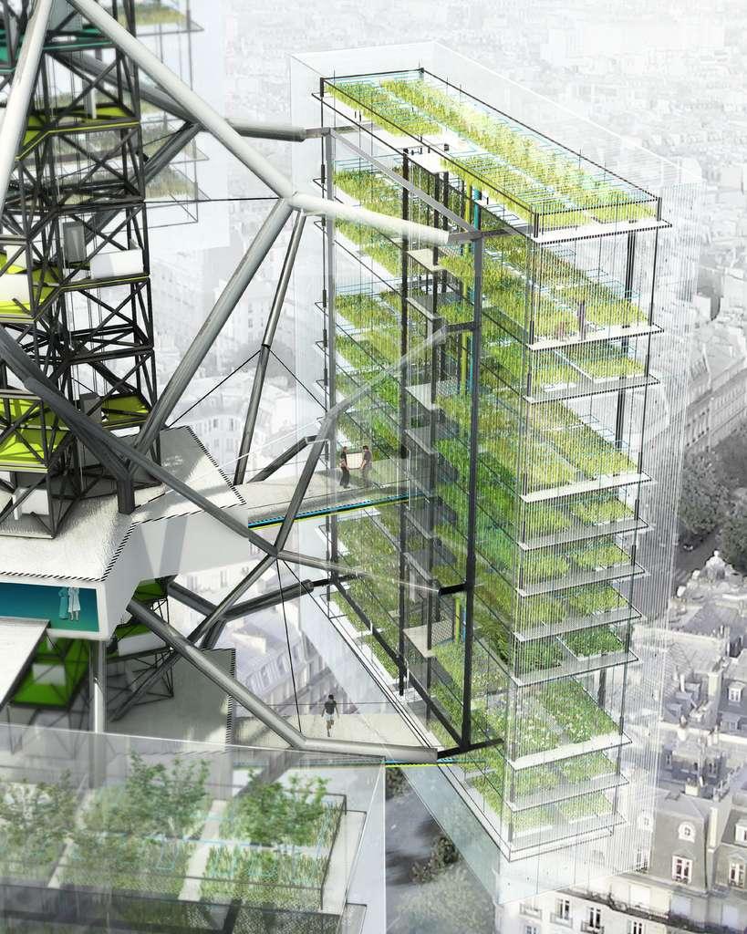 La ferme cactus, une ferme urbaine verticale, vue de l'intérieur