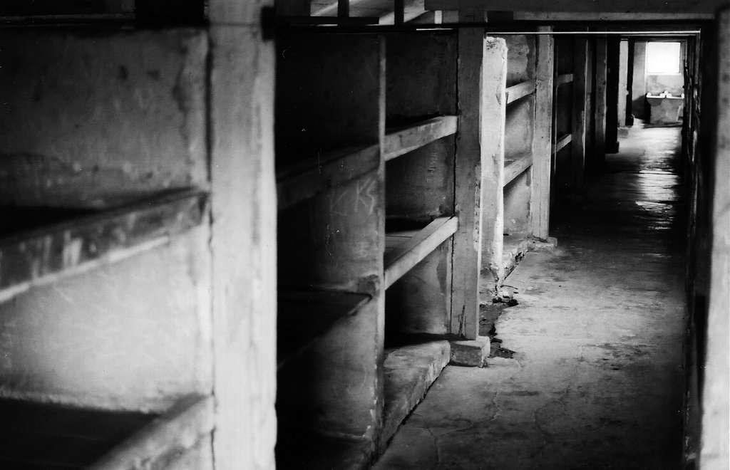 Intérieur d'une baraque au camp d'Auschwitz-Birkenau. Les hommes qui ont survécu aux camps auraient une espérance de vie accrue, une caractéristique que l'on ne retrouve pas chez les femmes. © esterina on silver, Flickr, cc by nc nd 2.0