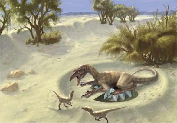 Une oviraptoridé femelle protège sa progéniture de « voleurs d'œufs », l'expression à l'origine de la famille des oviraptors. © Doyle Trankina et Gerald Grellet-Tinner