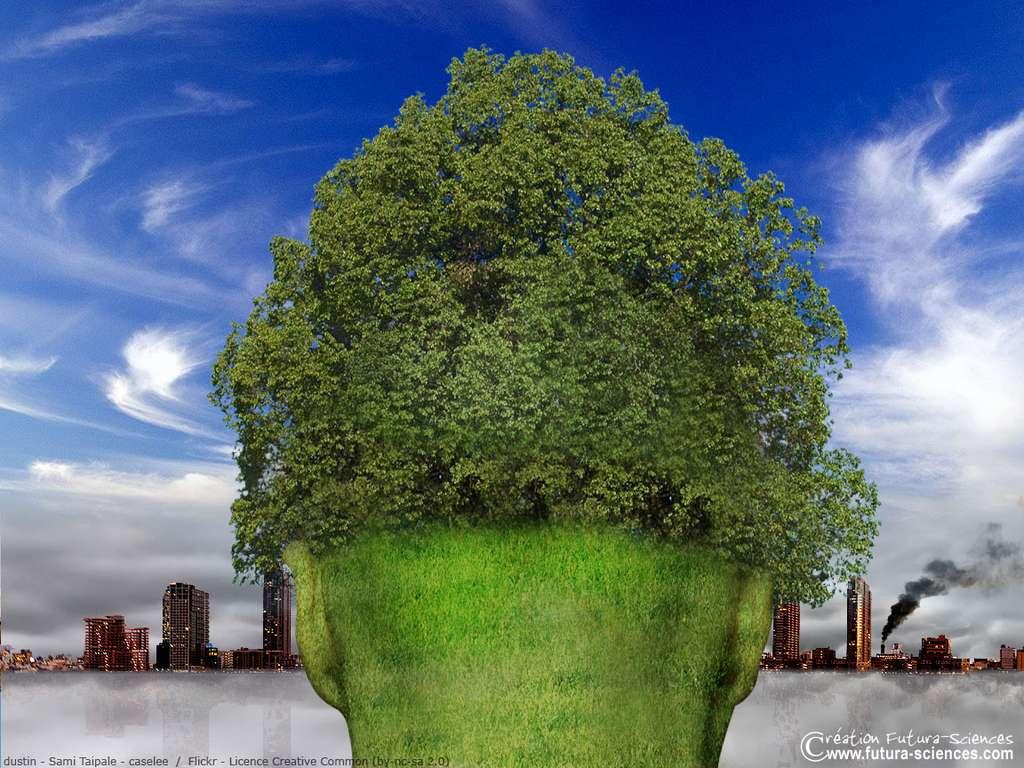 La tête verte