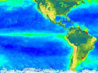 Production phytoplanctonique en été boréal (juin à août 1998), d'après les données de SeaWifs, en fausses couleurs. En vert, elle est la plus élevée. En bleu, elle est la plus faible. La zone verte suit les courants, qui forment un tourbillon océanique, suivant le plus souvent la côte. On voit ici que le grand tourbillon autour du Pacifique sud vient buter sur l'équateur (où le courant s'écoule vers l'ouest). © Nasa/Goddard Earth Science