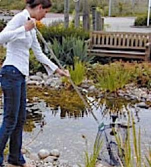 Utilisez l'épuisette pour enlever les algues en suspension dans votre bassin. © Ubbink Garden