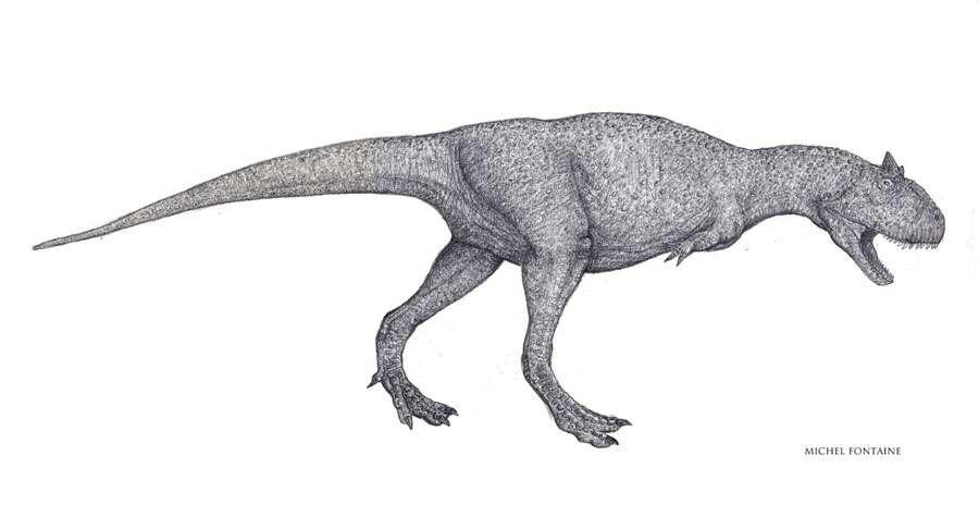 Carnotaurus ébauche dessin