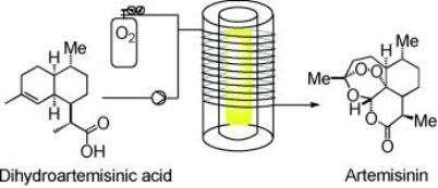 On peut voir ici le schéma simplifié de la synthèse d'artémisinine à partir de l'acide dihydroartémisinique. Les principales différences entre ces deux molécules apparaissent au niveau du nombre d'atomes d'oxygène, qui viennent former des cycles supplémentaires. © Seeberger et Lévesque, Angewandte Chemie