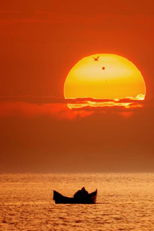 Instant de sérénité saisi en Roumanie avec le passage d'un oiseau devant le Soleil pendant le transit de Vénus. © Alex Cornu