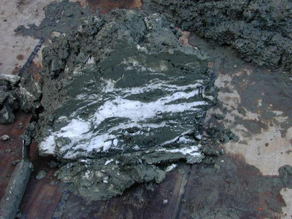 L'hydrate de méthane, enfoui dans les sédiments peut se déstabiliser et revenir à l'état gazeux. Retrouvés lors d'une expédition scientifique allemande, les filons de méthane (en blanc sur la photo) se trouvaient dans le premier mètre de sédiment à 1.200 m de profondeur, au large de l'Oregon (États-Unis). © Wusel007, Wikipédia, cc by-sa-3.0