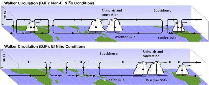 La circulation de Walker est une circulation atmosphérique qui redistribue l'excédant de chaleur sur la ceinture tropicale. Elle est ici représentée pour les mois de décembre, janvier et février (DJF) pour les conditions normales (schéma du haut) et pour les conditions El Niño (schéma du bas). Les branches ascendantes des cellules sont associées à une zone dépressionnaire, où une intense convection nuageuse (rising air and convection) se développe. Les branches descendantes sont associées à des zones de subsidence, caractérisées par des hautes pressions et une atmosphère sèche. Lors d'un événement El Niño, la branche ascendante de l'océan Indien se déplace vers l'est et peut se placer au-dessus de l'Inde, inhibant la formation de la mousson. © Penn State University