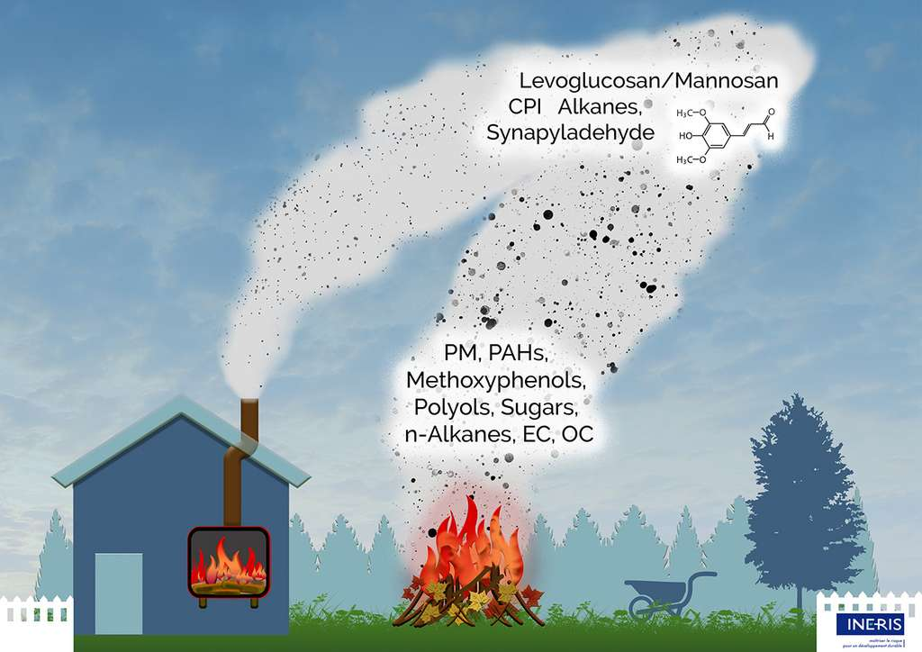 Résumé graphique de l'étude sur le brûlage des déchets verts et la combustion de bûches de bois en foyer. © Institut national de l'Environnement industriel et des RISques (Ineris)