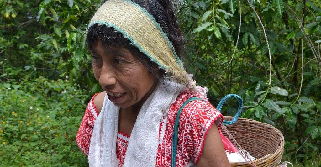 Ethnie Nahua. © Noyolcont, CC by-sa 3.0