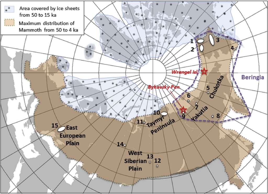 Le territoire du mammouth laineux (en brun) s'étendait de l'Espagne à l'Alaska durant le dernier Âge glaciaire. L'animal s'est définitivement éteint sur l'île Wrangel (étoile rouge au Nord) il y a 4.000 ans. © Laura Arppe et al, Quaternary Science Reviews, 2019.