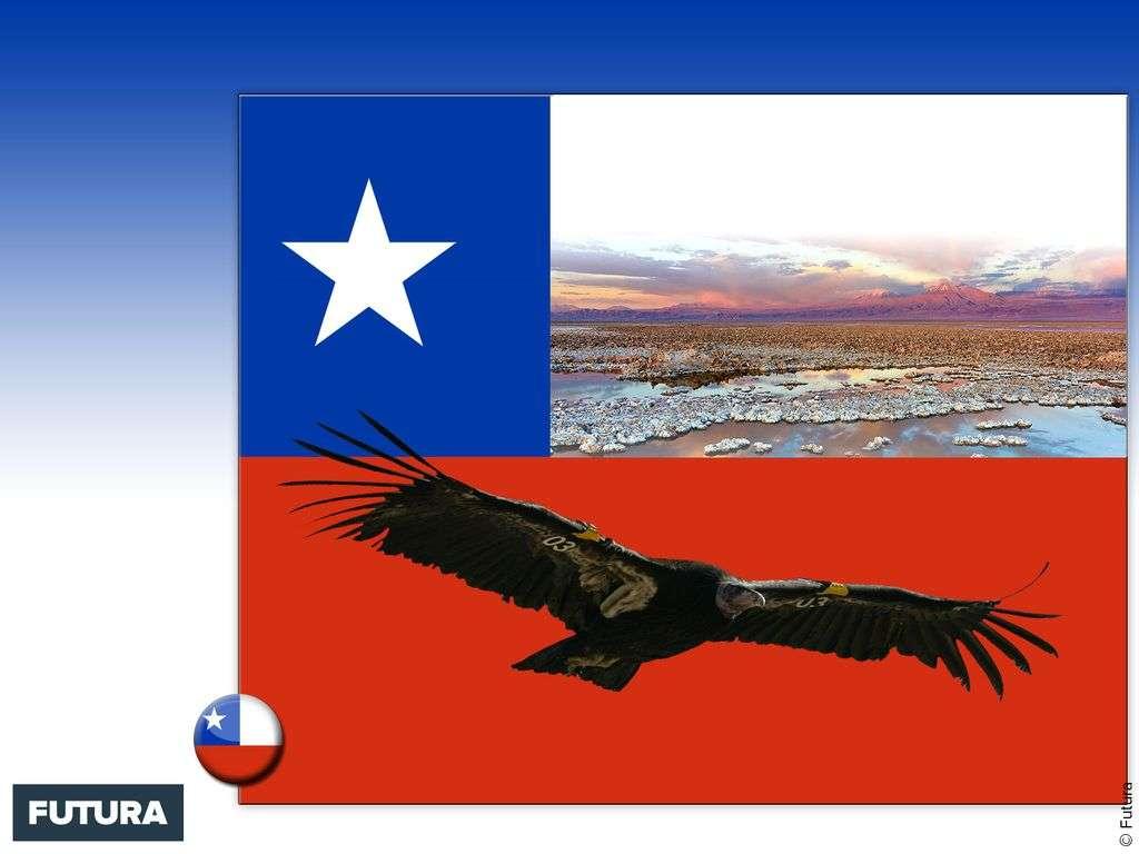 Drapeau : Chili