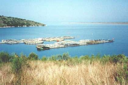 Aquaculture en Grèce.