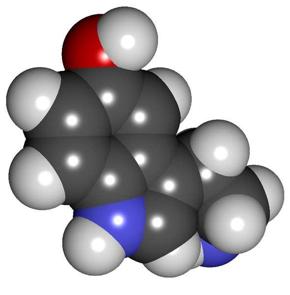 Une perturbation de la production de sérotonine peut, entre autres, être une cause de dépression. © Totot's