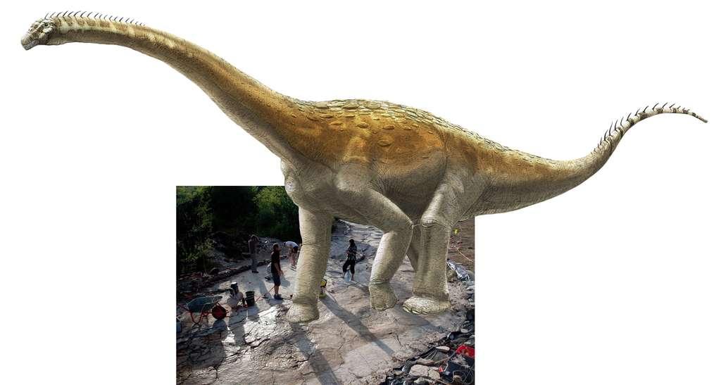Si le sauropode de Plagne marchait dans ses empreintes… © Dessin : A. Bénéteau ; photographie : Dinojura
