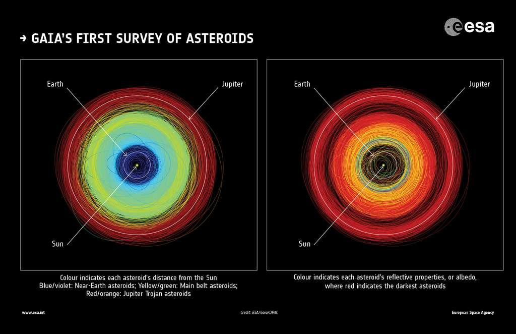À gauche, les orbites de plus de 14.000 astéroïdes observés par le satellite Gaia. Les différentes couleurs correspondent à leur distance au Soleil : en bleu et violet, les géocroiseurs ; en jaune et vert, les objets de la ceinture principale d'astéroïdes ; en rouge et orange, les astéroïdes troyens de Jupiter. Les orbites de la Terre et de Jupiter figurent également sur l'image comme référence. À droite, les couleurs des orbites indiquent l'albédo des astéroïdes (lumière réfléchie par la surface) d'après les données du télescope spatial infrarouge Wide Field Infrared Explorer (WIRE) de la Nasa : en jaune, vert, bleu et violet, les astéroïdes les plus brillants ; en rouge, les astéroïdes les plus sombres. © ESA/Gaia/DPAC; Orbit plots: CC By-SA 3.0 IGO
