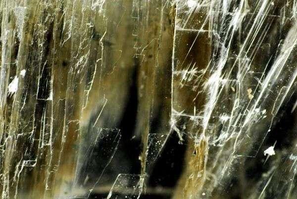 Gypse et ses cristaux monocliniques