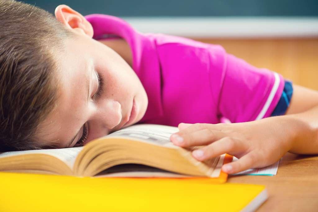 Des conséquences en matière de perte de gains d'apprentissages ont été observées en Europe. © Spass, Fotolia