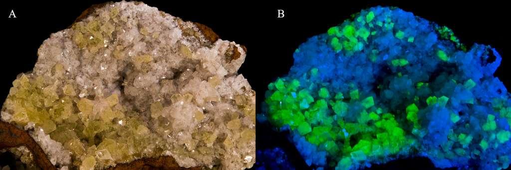 Deux espèces minérales naturellement fluorescentes : l'adamite fluorescence verte (à gauche) et l'hémimorphite fluorescence bleu pâle (à droite). © Didier Descouens, Wikipédia, CC by-sa 3.0