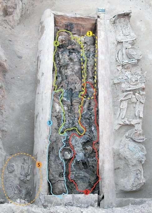 L'un des cercueils, en bois, retrouvés en Iakoutie (nord-est de la Russie). Mesurant 3,14 m de longueur pour 1,10 m de large et 78 cm de hauteur, il contenait cinq corps, repérés sur cette image par des lignes colorées et des numéros. On y voit les corps de trois femmes (2, 3 et 4), dont l'une (2) avait moins de 23 ans et l'autre (4), plus de 30. Elles sont accompagnées d'un garçonnet de 5 ans (1) et d'un enfant de moins de 4 ans (5). © P. Biagini et al., New England Journal of Medicine