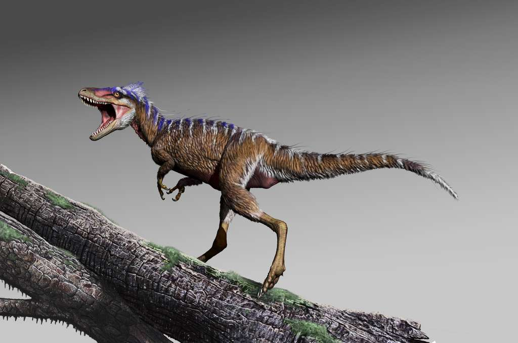 Moros intrepidus, le petit cousin du Tyrannosaurus rex, vivait il y a 96 millions d'années. © Jorge Gonzalez