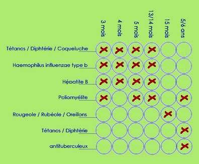 Les vaccins obligatoires chez l'enfant en France protègent contre de nombreuses infections, dont certaines peuvent encore être contractées à l'âge adulte, comme la coqueluche. © DP