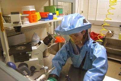 Pour travailler sur le virus Ébola, des mesures particulières doivent être prises. Les scientifiques sont revêtus d'une combinaison protectrice et travaillent dans des laboratoires de classification P4. Ces derniers sont totalement hermétiques et constitués de plusieurs sas de décontamination. © Wikimedia Commons, DP
