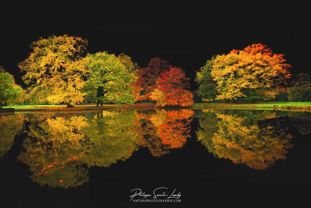 Le ciel noir de l'automne