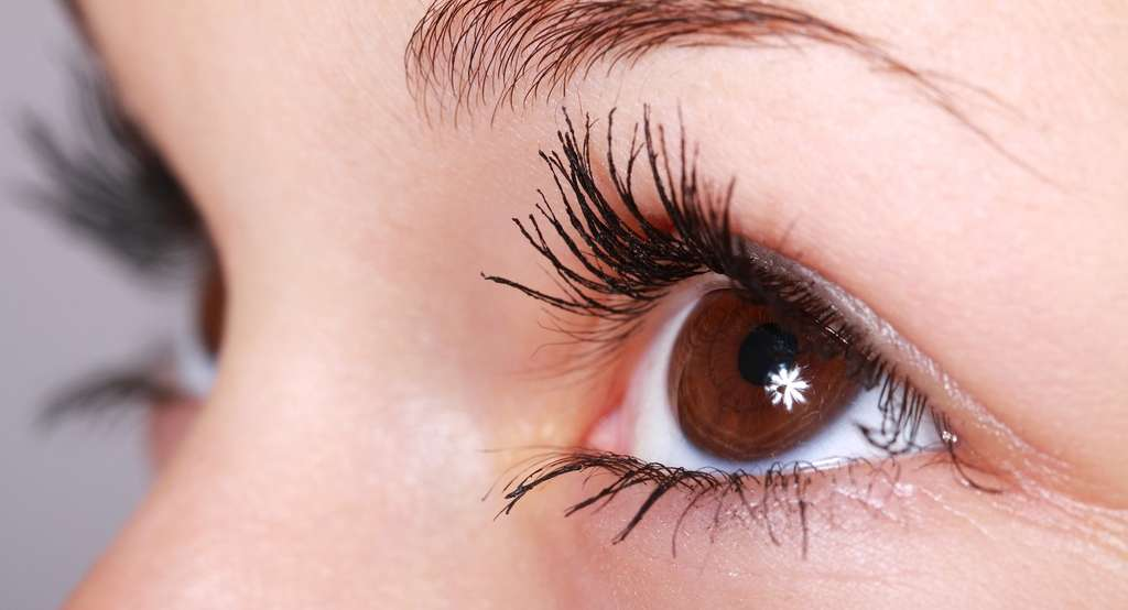 Une dilatation de la pupille peut être le signe d'un mensonge. © PublicDomainPictures, Pixabay, DP