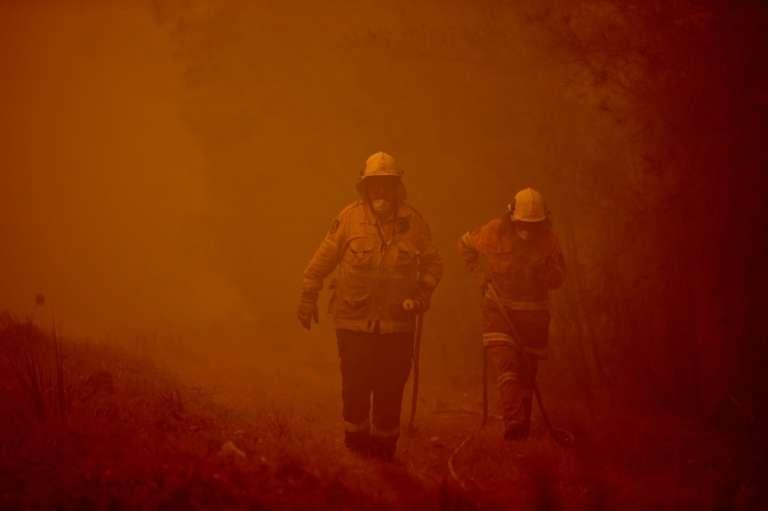 Les pompiers australiens luttaient lundi pour tenter de contrôler de gigantesques feux qui ont détruit 40 % des forêts de Fraser Island, une île de la côte est, classée au patrimoine mondial. © Peter Parks, AFP, Archives